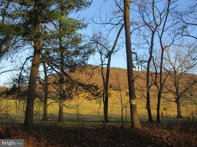 Jones Farm Road, Bentonville, VA - USA (photo 1)