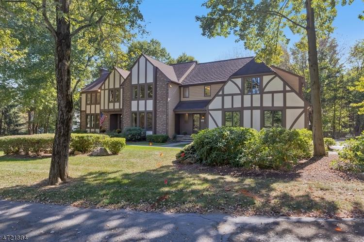 247 Douglas Rd, Bernards Township, NJ - USA (photo 2)