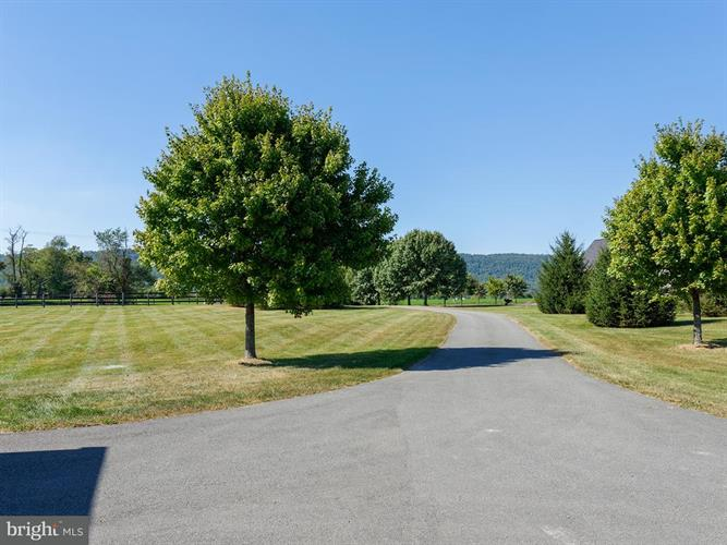 12934 Picnic Woods Road, Lovettsville, VA - USA (photo 4)