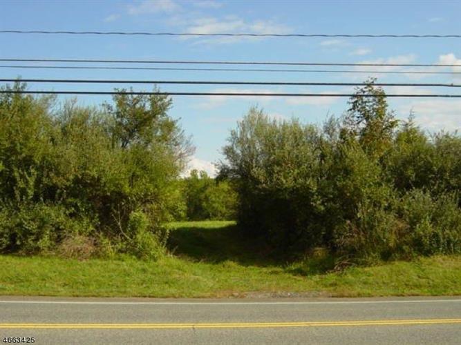 235 Pittstown Rd, Franklin Twp, NJ - USA (photo 5)