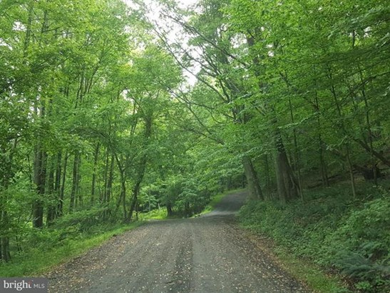 Nestlewood Road, Paeonian Springs, VA - USA (photo 1)