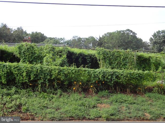 3251 Annandale Road, Falls Church, VA - USA (photo 1)