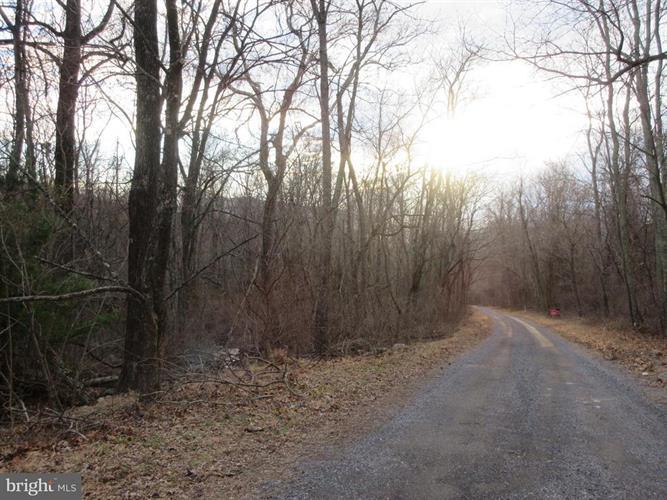Smith Run Road, Bentonville, VA - USA (photo 4)