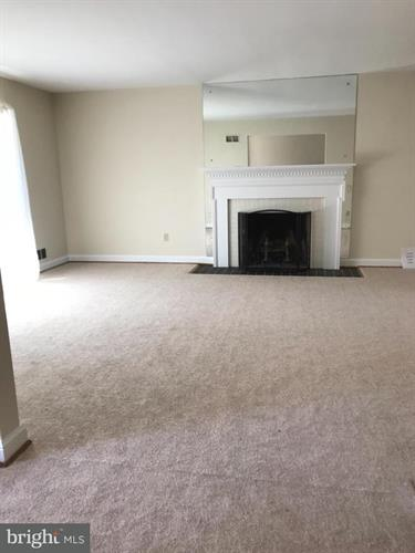 10215 Green Forest Drive, Silver Spring, MD - USA (photo 3)
