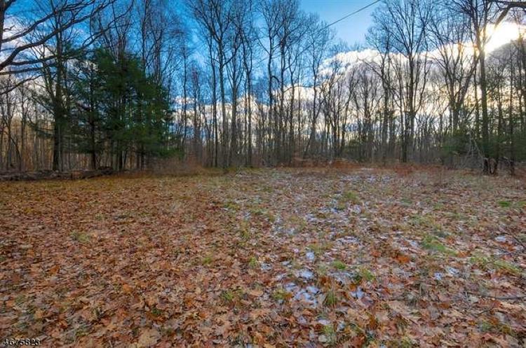 838 Green Pond Rd, Rockaway, NJ - USA (photo 4)