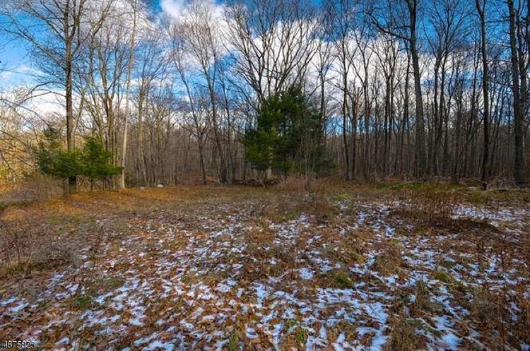 838 Green Pond Rd, Rockaway, NJ - USA (photo 5)