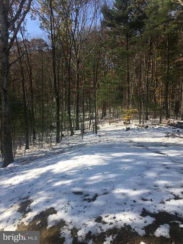 497 Mountain Brook Lane, Bentonville, VA - USA (photo 4)