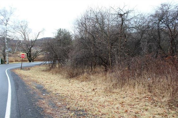 Milton Turnpike, Mount Tremper, NY - USA (photo 1)