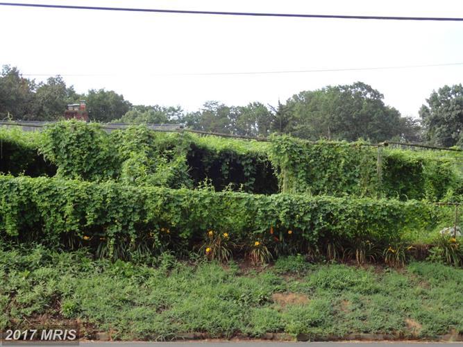 3251 Annandale Rd, Falls Church, VA - USA (photo 5)