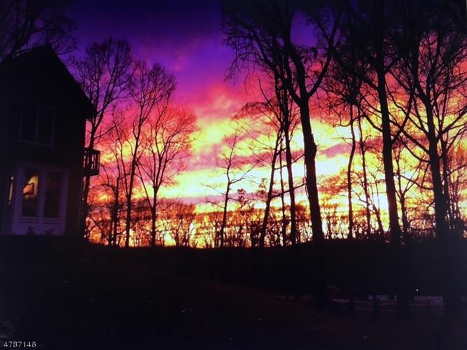 589 Sweet Hollow Rd, Alexandria Township, NJ - USA (photo 3)