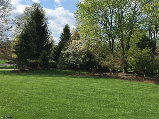 1 Pond View Ct, Readington, NJ - USA (photo 3)