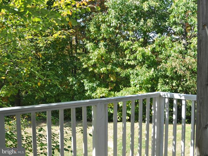 5970 Kimberly Anne Way, Alexandria, VA - USA (photo 1)