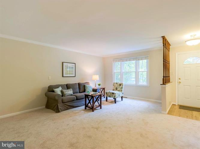 14502 Eddy Court, Centreville, VA - USA (photo 2)