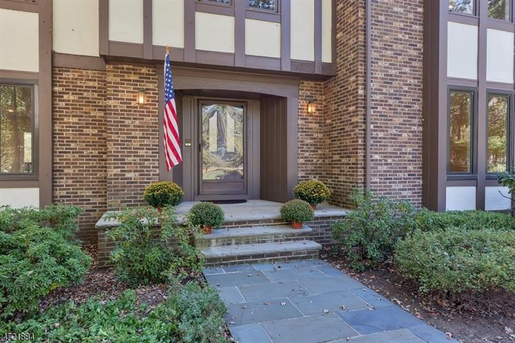 247 Douglas Rd, Bernards Township, NJ - USA (photo 3)