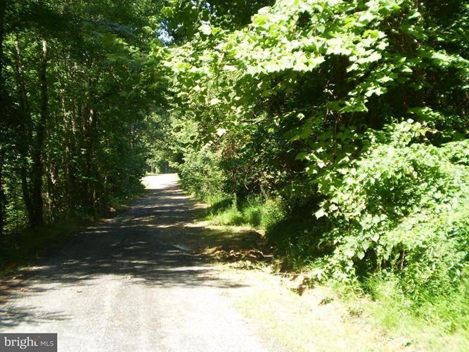 4574 Turkey Acres Road, King George, VA - USA (photo 2)