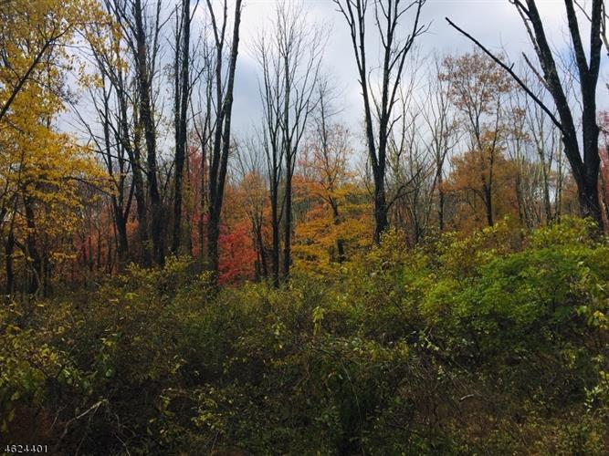 107 Mount Lebanon Rd, Glen Gardner, NJ - USA (photo 1)