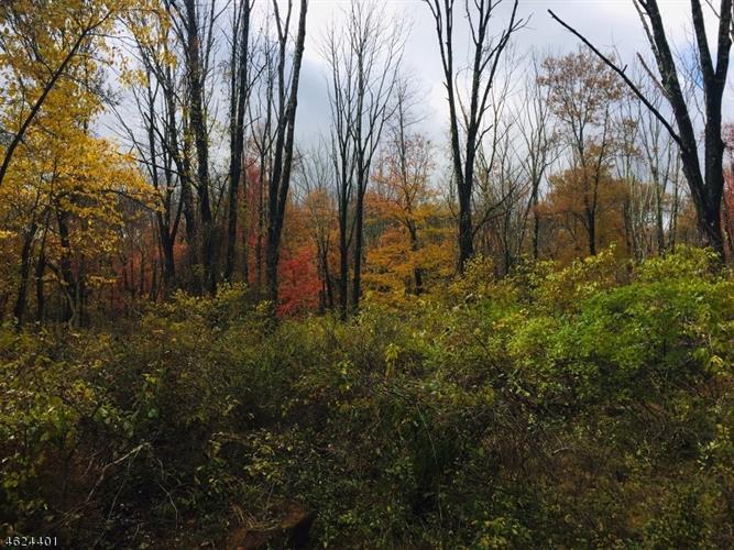 107 Mount Lebanon Rd, Glen Gardner, NJ - USA (photo 2)