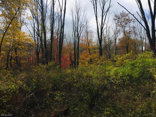 107 Mount Lebanon Rd, Glen Gardner, NJ - USA (photo 3)