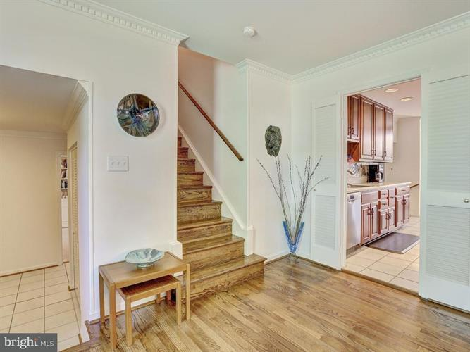14900 Notley Road, Silver Spring, MD - USA (photo 5)
