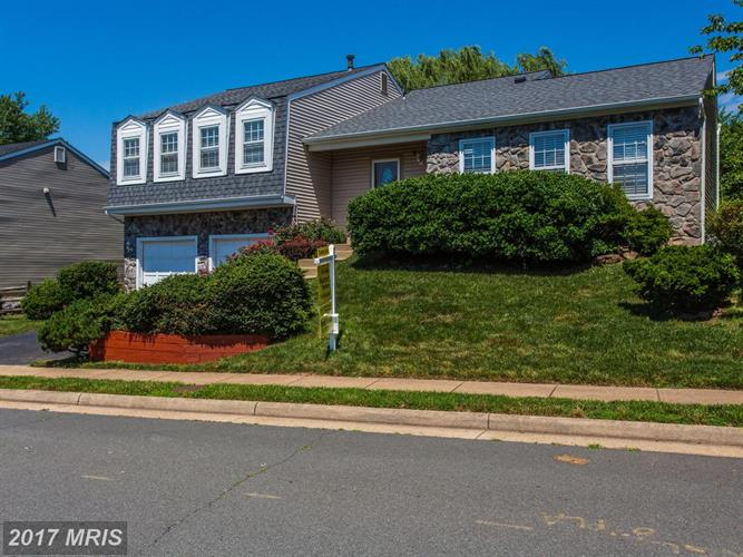 5520 Buggy Whip Dr, Centreville, VA - USA (photo 1)
