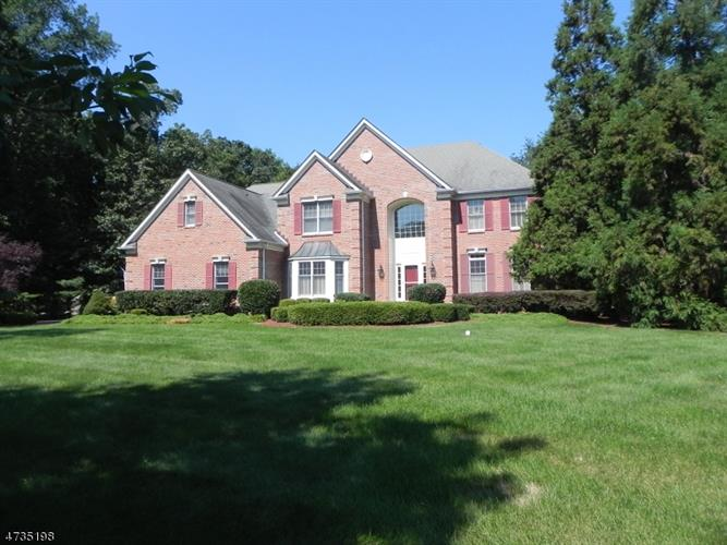 12 Red Maple Ln, Montgomery, NJ - USA (photo 1)