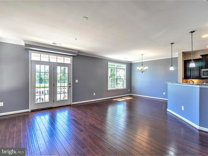 21170 Belmont View Terrace, Broadlands, VA - USA (photo 4)