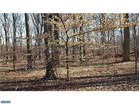 Lot 002 Honey Hollow Rd, Solebury, PA - USA (photo 1)