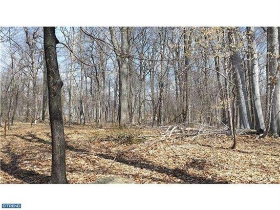 Lot 002 Honey Hollow Rd, Solebury, PA - USA (photo 2)