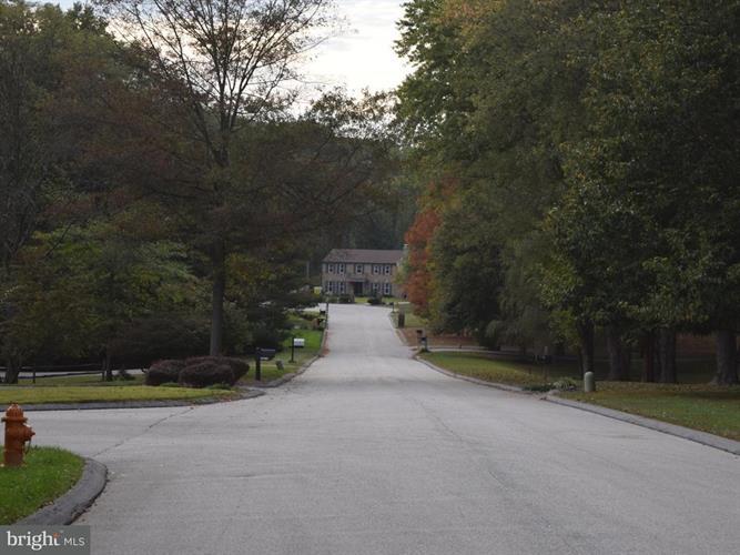 10778 Judy Lane, Columbia, MD - USA (photo 4)