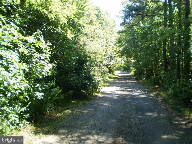4574 Turkey Acres Road, King George, VA - USA (photo 1)