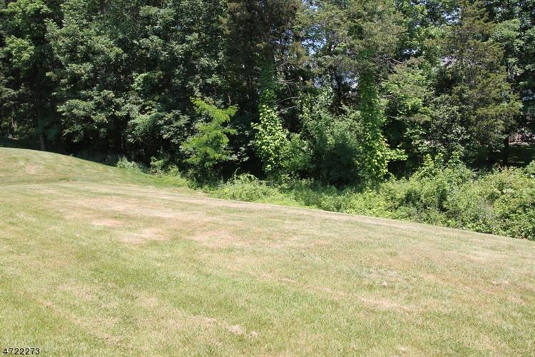 31 Plantation Rd, Readington, NJ - USA (photo 5)