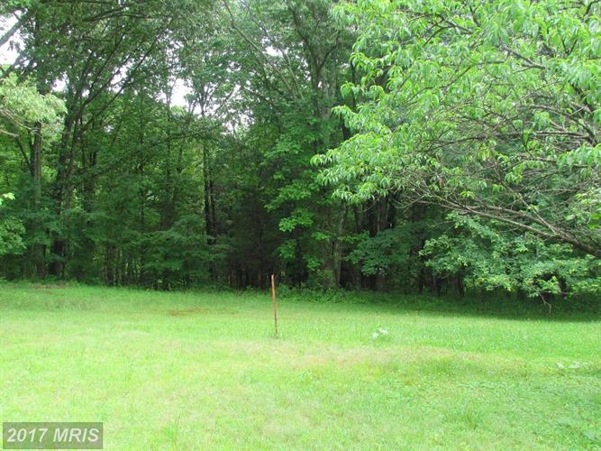 5523 Waterford Parcel 2 A1, Rixeyville, VA - USA (photo 1)