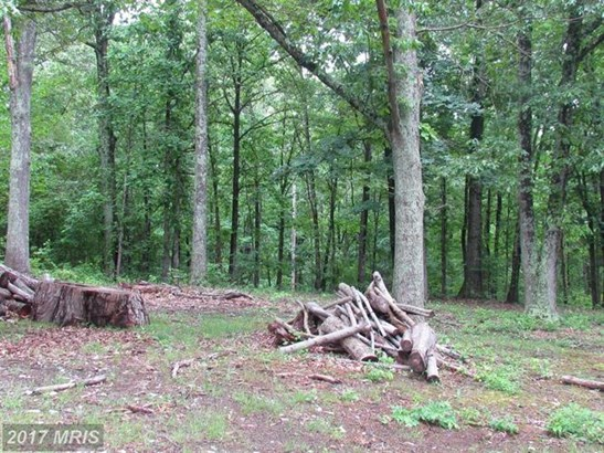 5523 Waterford Parcel 2 A1, Rixeyville, VA - USA (photo 2)