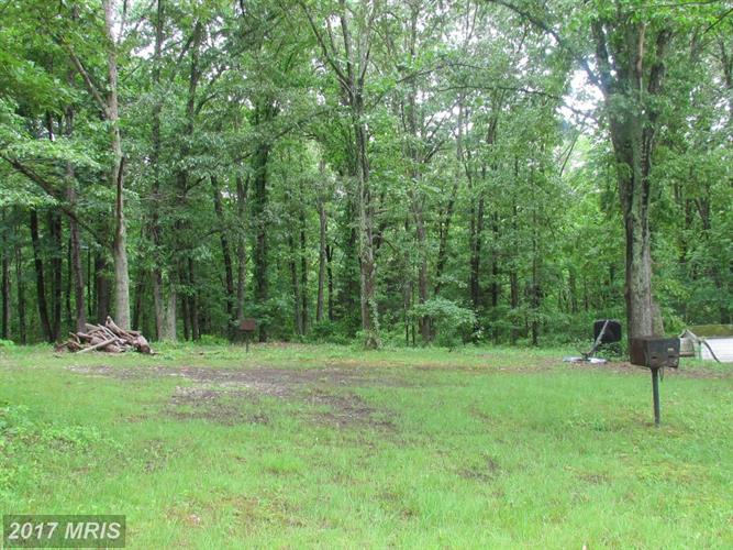 5523 Waterford Parcel 2 A1, Rixeyville, VA - USA (photo 3)