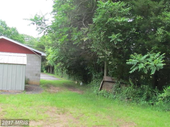 5523 Waterford Parcel 2 A1, Rixeyville, VA - USA (photo 5)