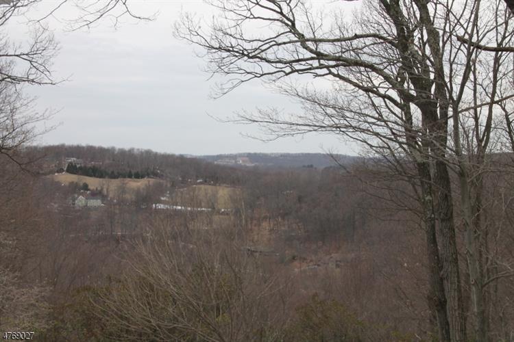 19 Ridge Rd, Tewksbury Township, NJ - USA (photo 3)