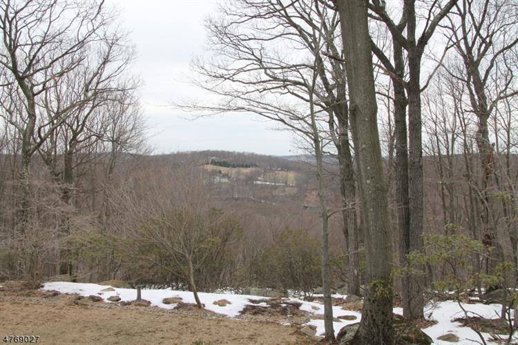 19 Ridge Rd, Tewksbury Township, NJ - USA (photo 4)