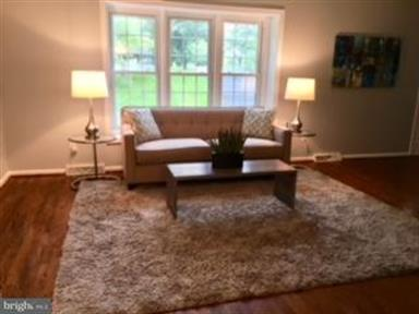 13201 Sherwood Forest Drive, Silver Spring, MD - USA (photo 3)