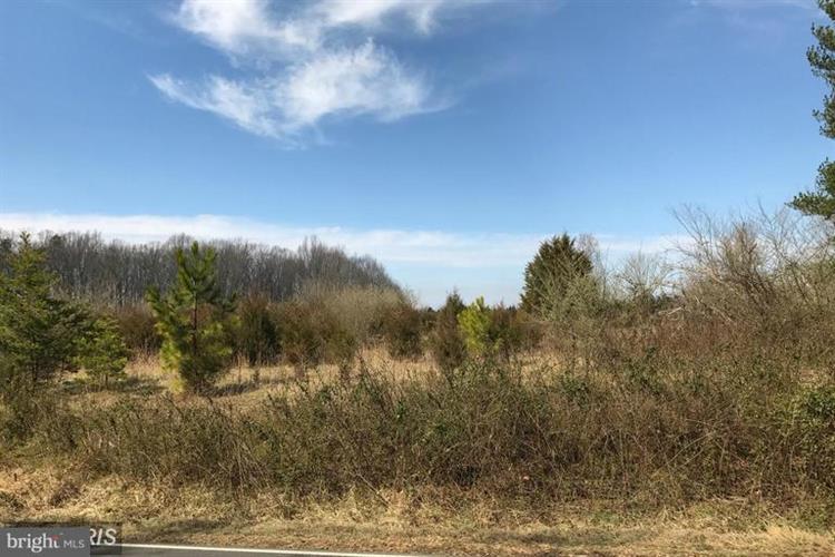 16250 Fleetwood Drive, Catlett, VA - USA (photo 1)