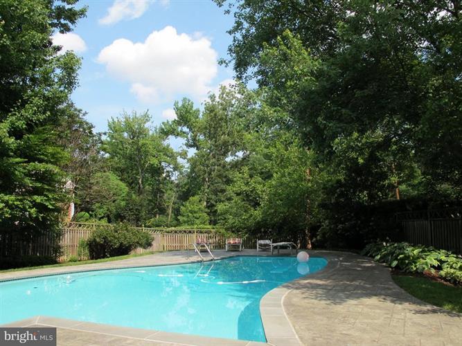 802 Hall Place, Alexandria, VA - USA (photo 2)