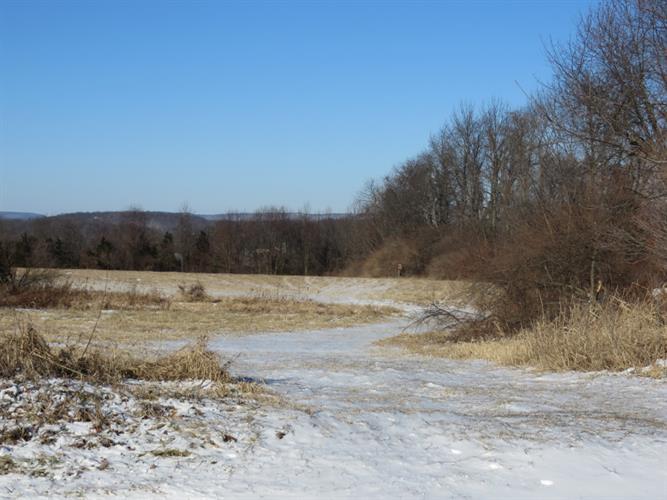39 Old Beaver Run Rd, Lafayette, NJ - USA (photo 4)