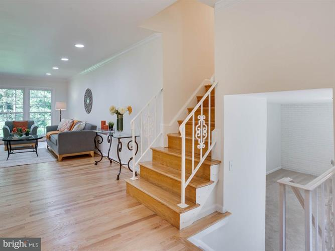 2502 Wood Fern Court, Reston, VA - USA (photo 4)