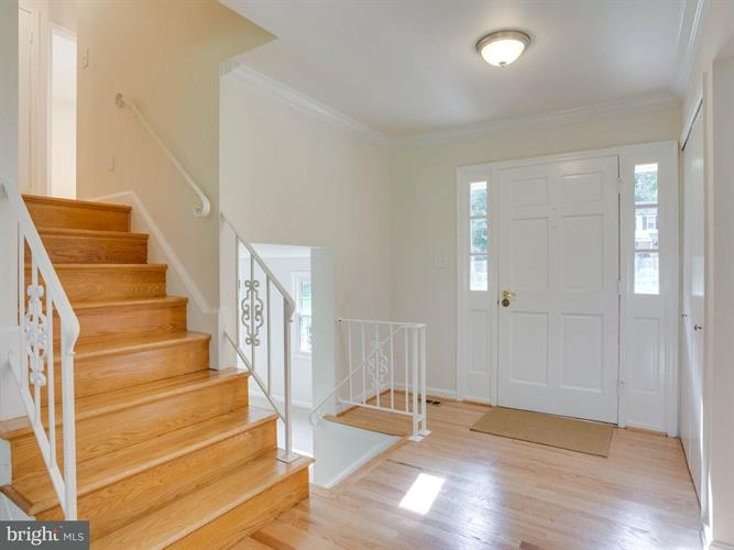 2502 Wood Fern Court, Reston, VA - USA (photo 5)