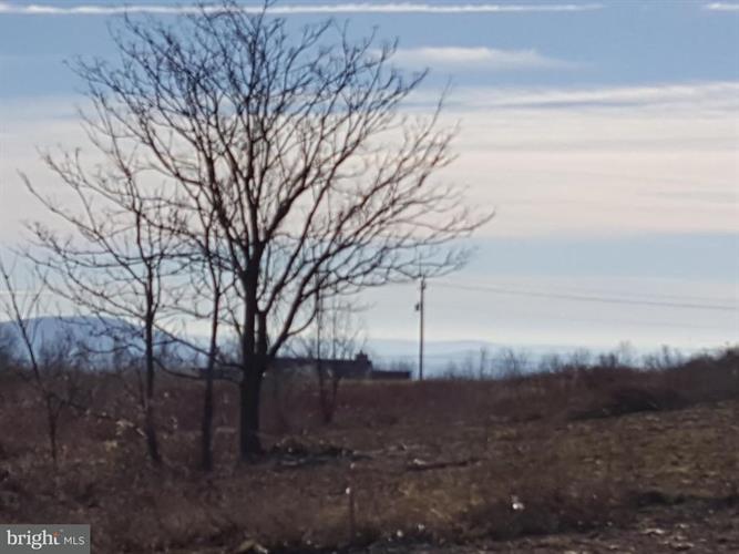 338 Freezeland Loop Road, Linden, VA - USA (photo 2)