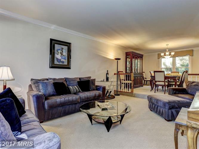 15005 Wellwood Rd, Silver Spring, MD - USA (photo 4)