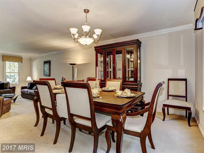 15005 Wellwood Rd, Silver Spring, MD - USA (photo 5)