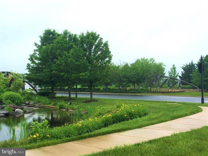 116 Lattice Drive, Stephenson, VA - USA (photo 4)