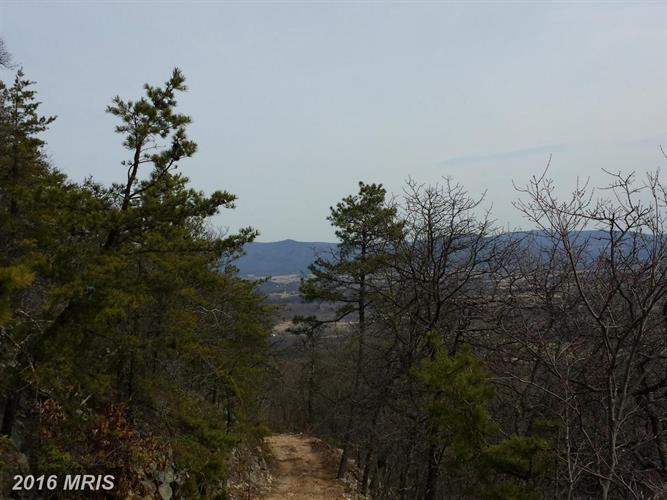 1400 Burners Gap Es Rd, Luray, VA - USA (photo 2)