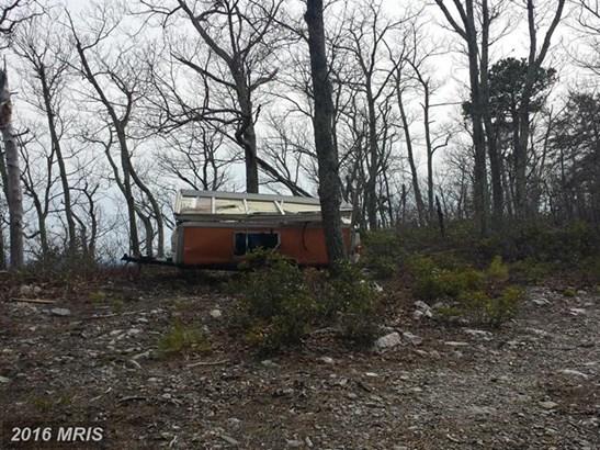 1400 Burners Gap Es Rd, Luray, VA - USA (photo 5)