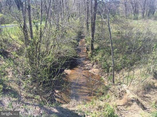 Orange Springs Road, Unionville, VA - USA (photo 5)